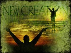 New Creation!!